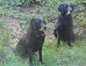 Keira & Kanya